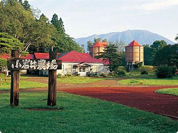 「小岩井農場」の画像検索結果